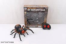 Паук на пульте управления игрушка