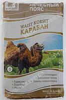 """Лечебный пояс из верблюжей шерсти """"Караван"""""""