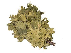 Веник Канадский дуб в упаковке, Saunapro