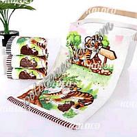 Кухонний рушник велюр-махра 25×50 Тигр