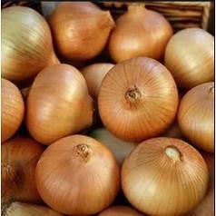 Лук севок (саджанка) Яліско 1 кг