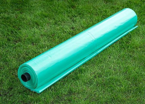 Зеленая 120мкр 3м*100м, фото 2