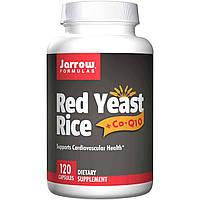 Коэнзим Q10 и Красный рис, витамины для сердца, Jarrow Formulas, 120 капсул