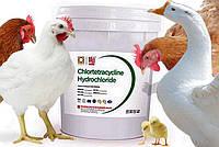 Використання хлортетрацикліну у ветеринарній практиці