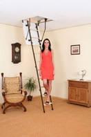 Чердачная лестница Oman Mini 80x70