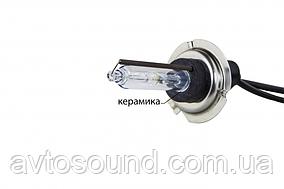 Ксеноновая лампа Infolight H7 (+50%) 5000K (шт)