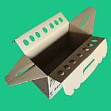 Коробка для перенесення тварин, фото 2