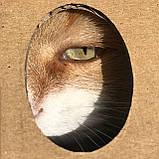 Коробка для перенесення тварин, фото 4