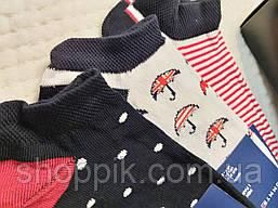 Женские носки Tommy Hilfiger 9 пар в подарочной упаковке, фото 2