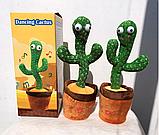 Танцюючий плюшевий кактус М'яка музична, інтерактивна іграшка кактус у горщику для співу танців у вазоні, фото 8