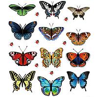 """Наклейка на стену, виниловые наклейки, украшения стены наклейки """"разноцветные бабочки 12шт и божьи коровки"""""""