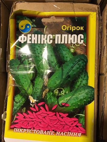 """Семена огурцов """"Феникс Плюс"""" 5 г ТМ """"Флора Плюс"""", фото 2"""