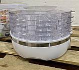 Дегидратор, сушилка для овощей, фруктов, ягод и грибов silvercrest, фото 3