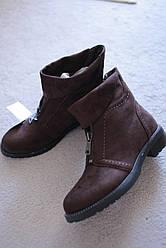 Женские ботинки коричневые замшевые классические молния впереди 36-41