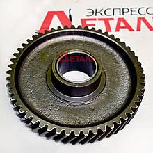 Шестерня промежуточная Д-240 МТЗ 240-1006240