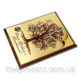 Картина денежное дерево с позолоченными монетами 20х25