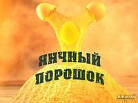 Яичный порошок