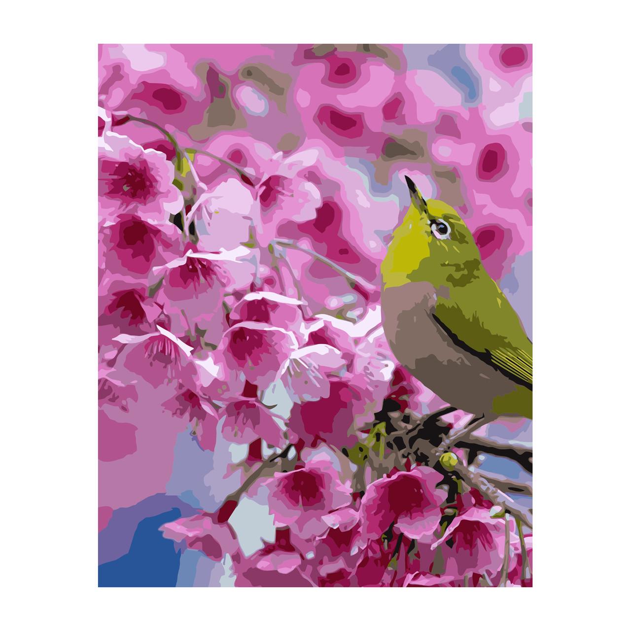 Картина за Номерами Зелена пташка на гілці 40х50см Strateg