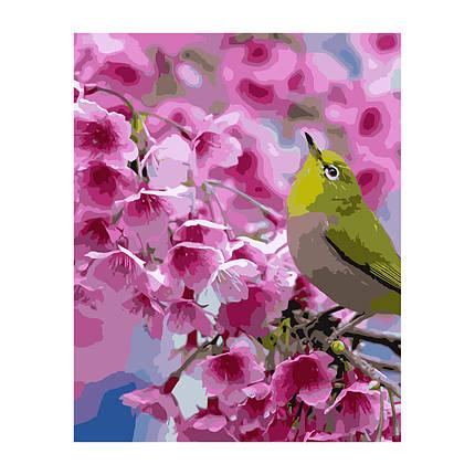 Картина за Номерами Зелена пташка на гілці 40х50см Strateg, фото 2