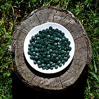 Хлорелла в таблетках (250мл.) опт