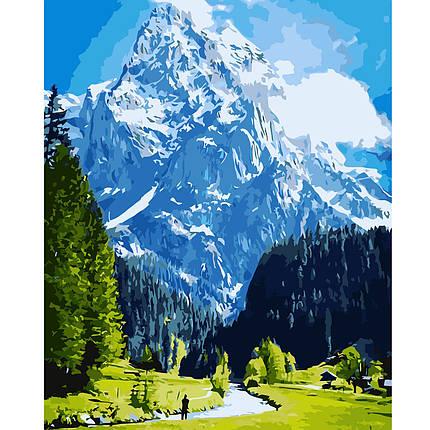 Картина за Номерами Блакитні гори і зелене поле 40х50см Starteg в коробці, фото 2