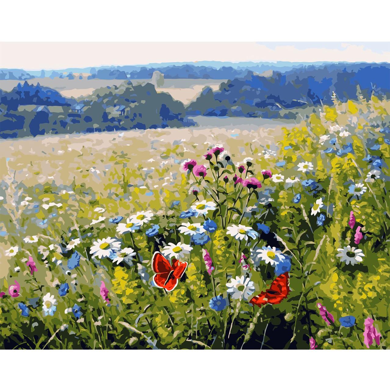 Картина за Номерами Польові квіти 40х50см Starteg в коробці