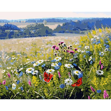 Картина за Номерами Польові квіти 40х50см Starteg в коробці, фото 2