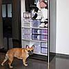 Органайзер (коробка) для обуви 33 x 23.5 x 13.5 см Springos HA3008, фото 3