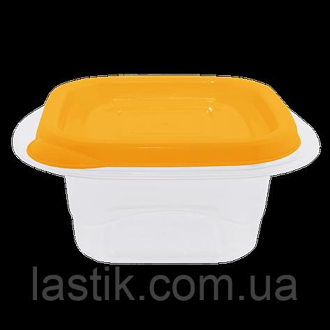 Контейнер для харчових продуктів Алеана Омега квадратний 2.1 л, фото 2