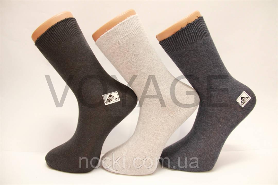 Стрейчевые женские носки Житомир гладкие, эконом класс