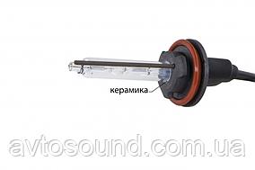 Ксенонова лампа Infolight H11 (+50%) 6000K (шт)