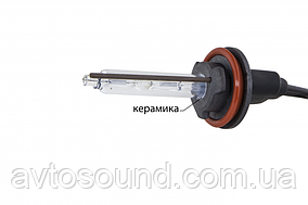 Ксеноновая лампа Infolight H11 (+50%) 6000K (шт)