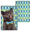 Обложка для паспорта с котиком