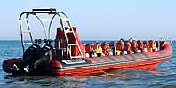 Лодка Vector RIB 1100 (Valmex), фото 2