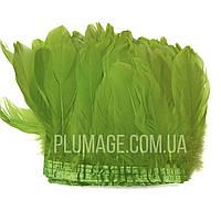 Перьевая тесьма из гусиных перьев. Цвет салатовый. Цена за 0,5 м