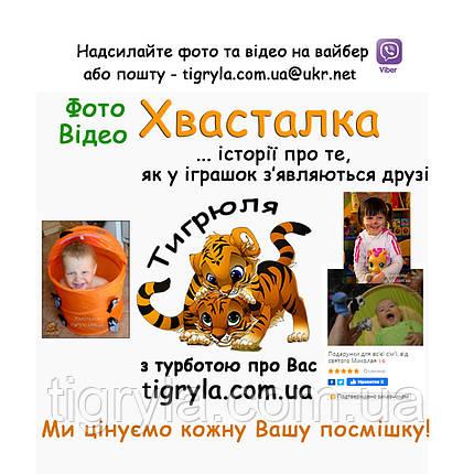 Игрушки Кошечки Собачки герои мультфильма музыкальные мягкие, фото 2