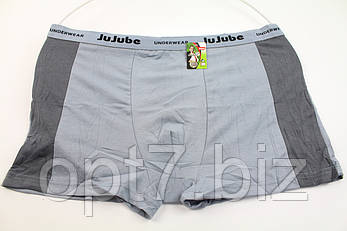 Мужские боксеры бамбуковые 4XL/6XL «Jujube», фото 2