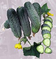 Семена огурца партенокарпического типа Аристократ F1,NongWoo Bio (Корея), упаковка 1000 семян