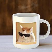Чашка С Котом из Мемов