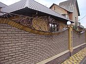 Заборы кованые Запорожье, фото 3