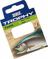 Zebco Готовые поводки Trophy Hooks to Nylon Trout (Форель) 70см. (10шт) (Готовые поводки №10 Trophy Hooks to Nylon Trout 0,17mm. 70см. (10шт))