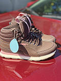 Високі коричневі хайтопы, кросівки puma оригінал, фото 8