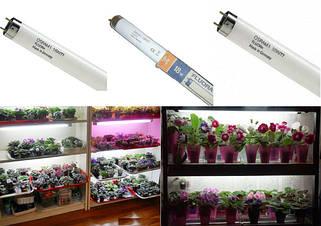 Лампы для растений FLUORA