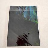 "Набір ""Тоторо"": щоденник, пенал, скетчбук, фото 3"