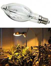 Лампы для растений ДРИЗ, ДНаЗ