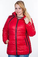 Теплая   Модная Зимняя Куртка (44-54) , доставка по Украине