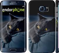 """Чехол на Samsung Galaxy S6 Edge G925F Дымчатый кот """"825c-83"""""""
