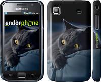 """Чехол на Samsung Galaxy S i9000 Дымчатый кот """"825c-77"""""""