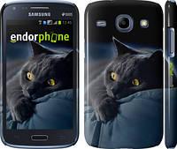 """Чехол на Samsung Galaxy Core i8262 Дымчатый кот """"825c-88"""""""