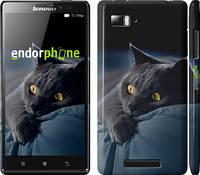 """Чехол на Lenovo Vibe Z K910 Дымчатый кот """"825c-85"""""""